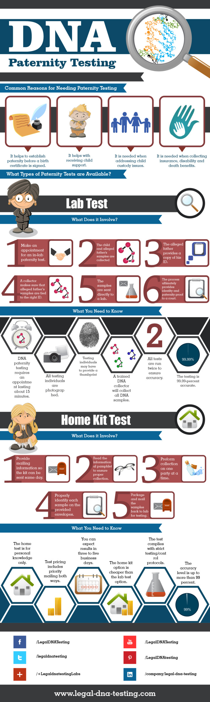 Paternity Testing Infographic