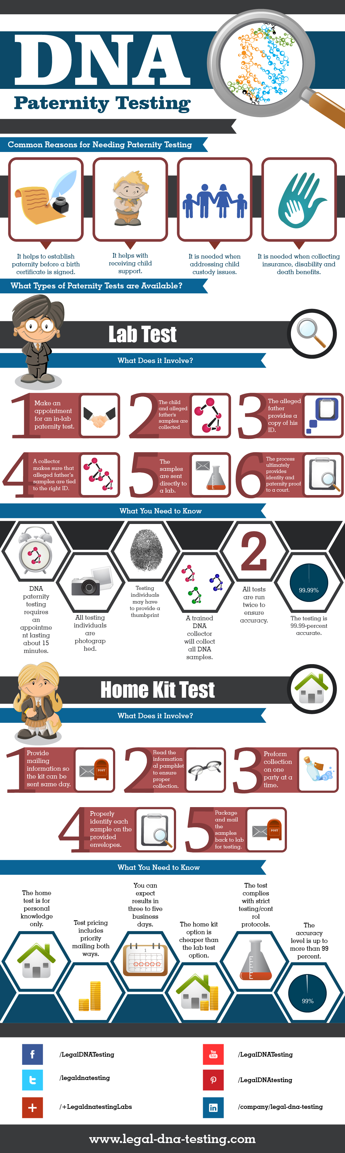 InfographicEverything You Need To Know About DNA Paternity Testing